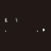 logo_bibraun aesculap salvador navarro
